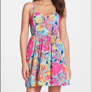 Christine Print Poplin Fit & Flare Dress